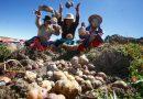 ¡Atención urgente a las deudas agrarias!
